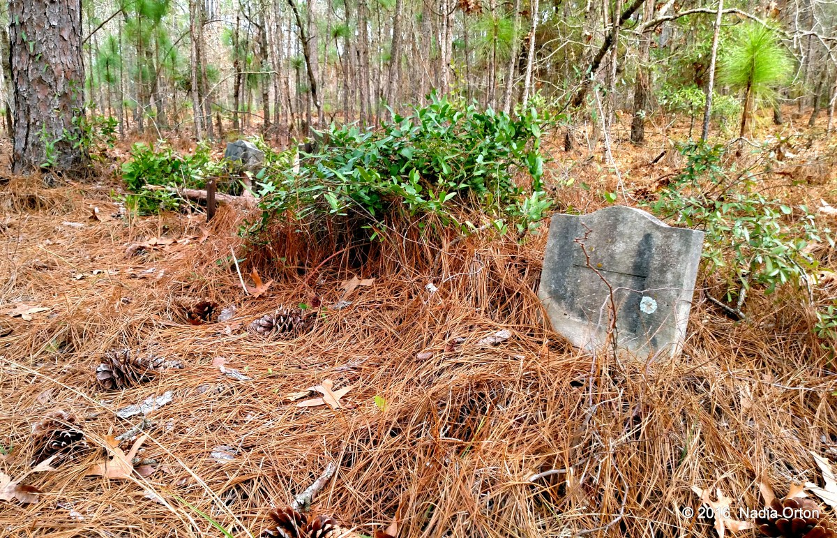 New Hanover County, North Carolina: Hidden gravestones in the Lower Cape Fear