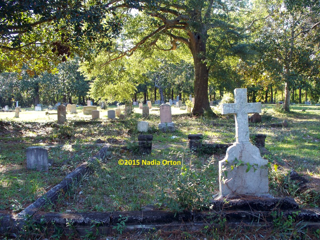 Pine Forest Cemetery Archives - Sacred Ground, Sacred History