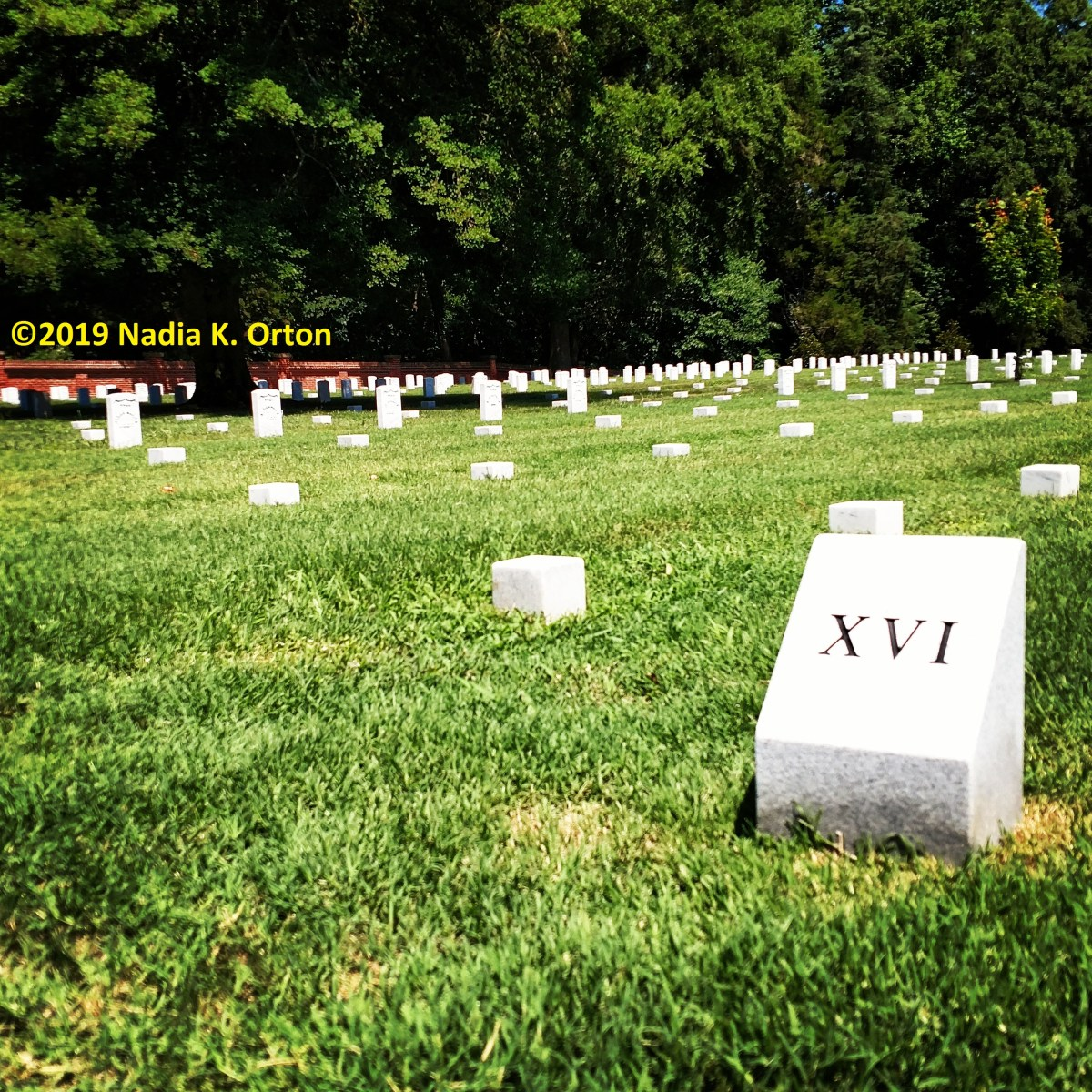 Petersburg, Virginia: United States Colored Troops, Poplar Grove National Cemetery