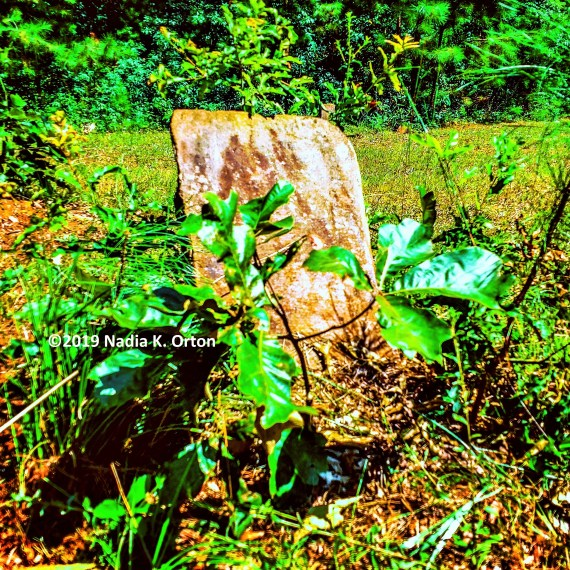 DeKalb County, Georgia: Detecting hidden graves, Decatur