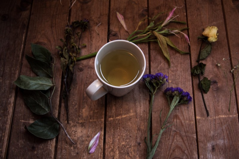 herbalism courses distance learning