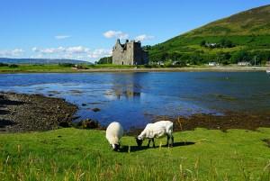 Tour the Isle of Arran - Scotland Sacred Sites Tour   Sacred Mystical Journeys