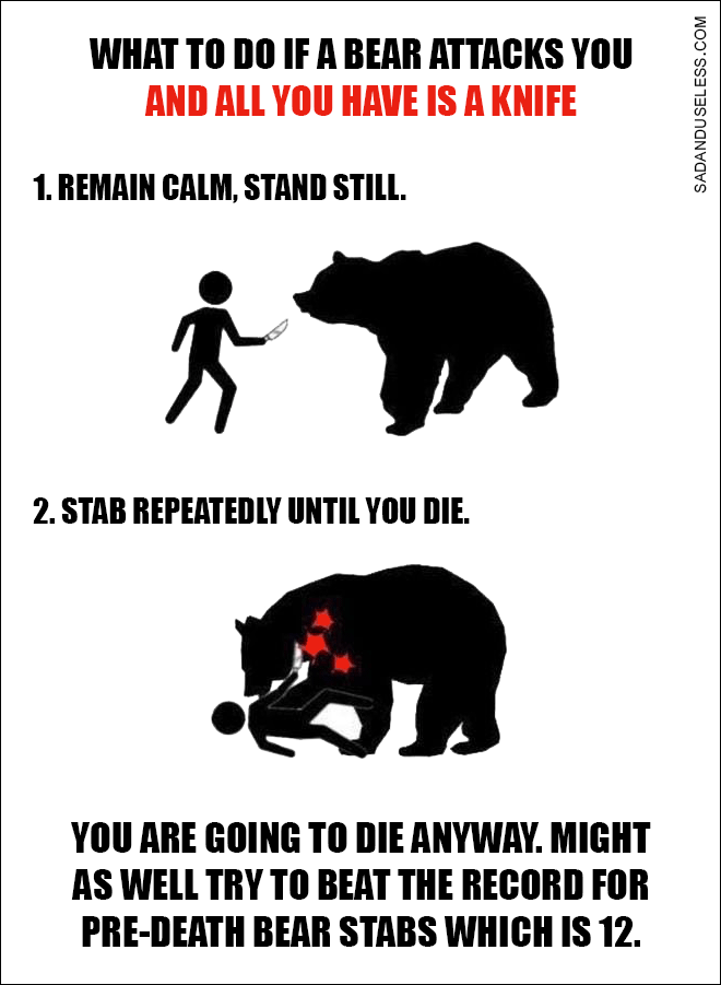 What To Do If a Bear Attacks You And All You Have Is a Knife