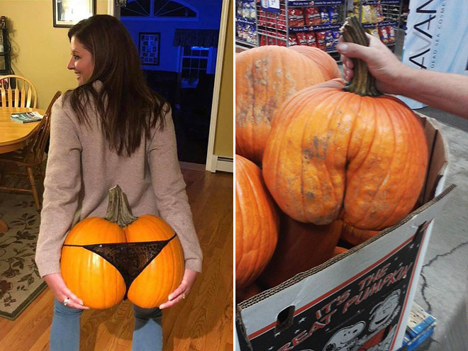 Beautiful pumpkin butts.