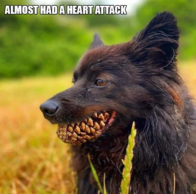 Werewolf.