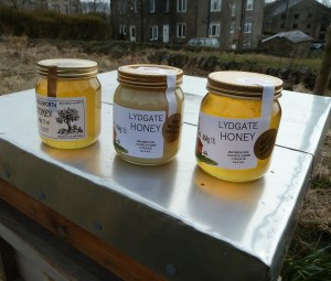 SWEET: Honey from the hills