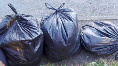 Delph rubbish