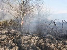 Den Lane Ladcastle Road Fire (2)
