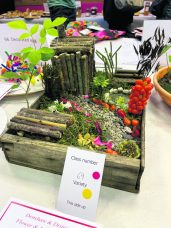 Denshaw Flower Show 2021 exhibits-13