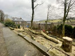 Diggle tree felling protests 08-03-21 (2)