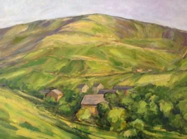 Saddleworth Hillside by Sheila Dewsbury