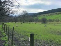 Greenbelt campaigners keep up pressure over GM housing plan