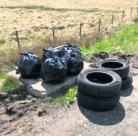 Litter and tyres