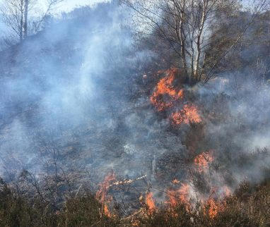 Uppermill CEmetery fire (2)