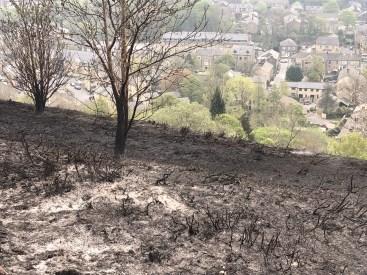 charred hillside overlooking Uppermill