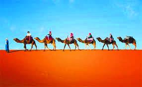 p32 sadd travel Morocco pic