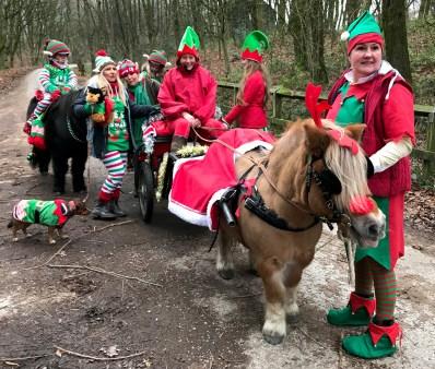 Santa's sleigh and pony