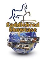 Saddlebred Showcase
