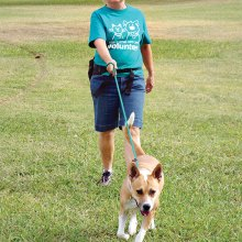 SaddleBrooke newcomer Debbie Grafmiller joined Wags & Walkers this fall to help walk dogs at Pima Animal Care Center; photo by Jan Pede