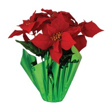 Don't be foiled by Poinsettia wrap!