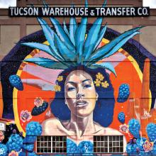 "The ""Goddess of Agave"" mural, located at 440 North 7th Avenue in Tucson, was created by six different artists. Painted on a warehouse wall, the mural's total size is 2000 square feet!"