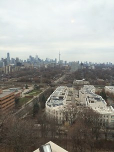 View from Casa Loma Castle