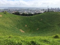 View from Mt.Eden