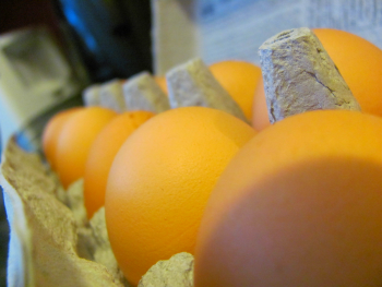 Photo of eggs in a box