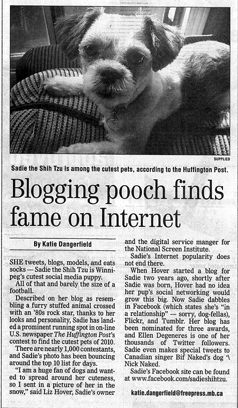 Sadie Shih Tzu article in the Winnipeg Free Press newspaper