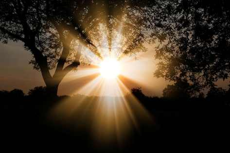 Light therapy for the mind and body