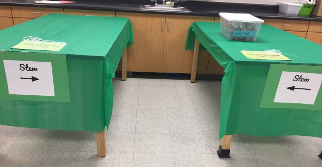 Two tables covered in a green tablecloth, each labeled stem. There is a sink in the background.