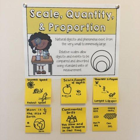 Scale Proportion Quantity