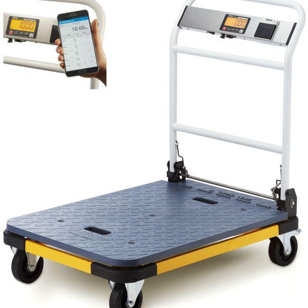 Go portable platform scales