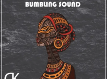 Midnight SA & TorQue MuziQ Bumbling Sound Mp3 Download Safakaza