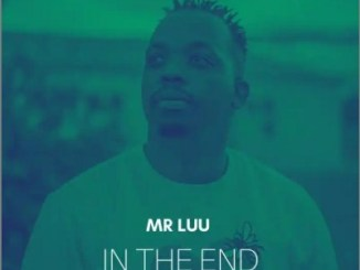 Mr Luu In The End Mp3 Download Safakaza