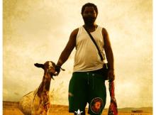 Sjava Maduze Mp3 Download Safakaza