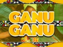 Mega Ganu Ganu ft. Audrey Kozwana Mp3 Download Safakaza