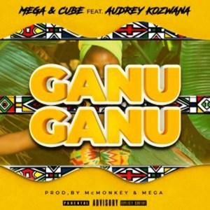 Mega Ganu Ganu ft. Audrey Kozwana Mp3 Download Safakaza