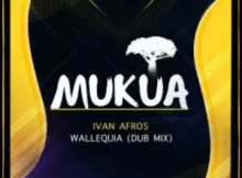 Ivan Afro5 Wallequia Dub Mix Mp3 Download SaFakaza