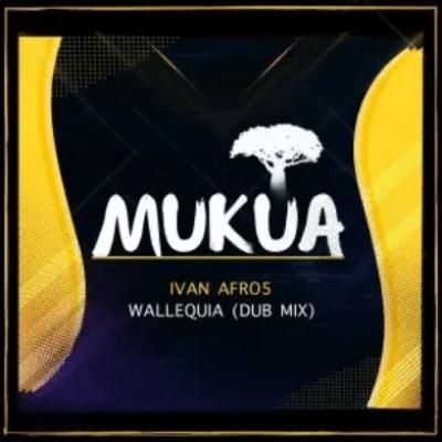 Ivan Afro5 Wallequia Dub Mix Mp3 Download SaFakaza