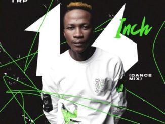 Mdu aka TRP & Bongza Ngithembe ft Sha Sha Mp3 Download SaFakaza