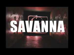 Savanna – Lady Du x Musa Keys x Focalistic x Mr Jazziq