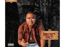 Prince Tee Sivulele ft Dj Obza Mp3 Download SaFakaza