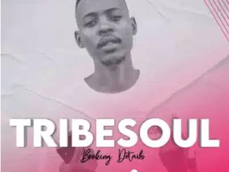 TribeSoul & Bido Vega Nkulee Mp3 Download SaFakaza