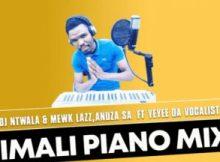 DJ Ntwala & YND Mewk Lazz, Anuza SA – lmali ft Yeyee Da Vocalist (Amapiano Mix)