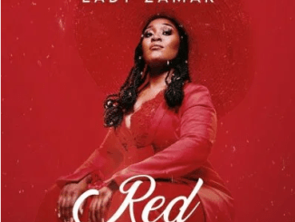 Lady Zamar Red EP Download