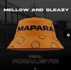 Mellow & Sleazy – Zimbali ft Daliwonga