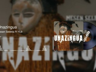Mesen Selekta ft YLB – Unazingua