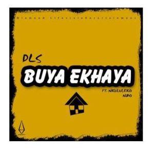 DLS Buya Ekhaya Ft. Nkululeko Nzo Mp3 Download Safakaza