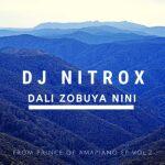 Dj Nitrox Dali Zobuya nini Mp3 Download Safakaza